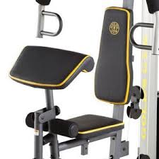 Chair Gym Review Xr 55 Home Exercise Gold U0027s Gym Review