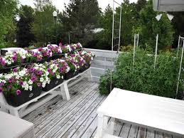low maintenance landscaping ideas minnesota backyard small the