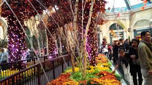 bellagio las vegas thanksgiving decorations 2014