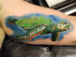 tattoo tribal turtle sea turtle tattoos designs ideas and meaning tattoos for you
