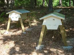 About Me And My Hives Top Bar Bees