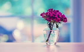 beautiful flowers vase wallpaper 1680x1050 22548