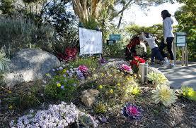 Quail Botanical Gardens Free Tuesday S D Botanic Garden Named To Top 10 List The San Diego Union Tribune