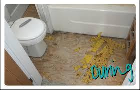 Bathroom Carpets Carpet In The Bathroom Interior Design Ideas
