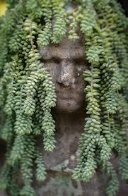 Face Planter 127 Best Pot Heads U0026 Planters Images On Pinterest Head Planters
