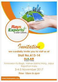 rays power experts pvt ltd linkedin