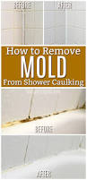 Removing Mold From Bathroom Ceiling How To Get Rid Of Black Mold In Your Shower Caulking Remove Mold