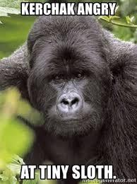 Angry Sloth Meme - kerchak angry at tiny sloth grad student gorilla meme generator