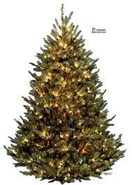 christmas tree tree png 2 by iamszissz on deviantart