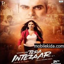 Seeking Theme Song Mp3 Intezaar T Dj Songs Songs