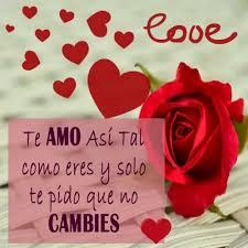 bonitas de rosas rojas con frases de amor imagenes de amor facebook 23 imágenes de rosas rojas con frases de amor romanticas