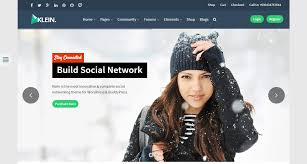Home Design Social Network 42 Best Wordpress Social Networking Themes 2017 Softwarefindr