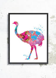 Nursery Bird Decor Ostrich Watercolor Print Ostrich Poster Ostrich Painting