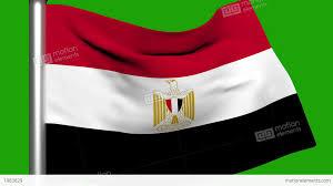 Eygpt Flag Flag Animation Egypt Stock Animation 1983629