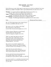 romeo and juliet essay quotes romeo and juliet theme essay true