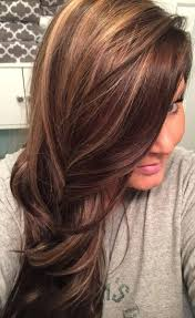 grey hair with highlights and low lights for older women the ultimate revelation of dark brown hair with lowlights dark