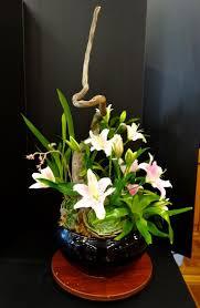 garden pots australia photo album 15 best pot et fleur images on pinterest flower centerpieces