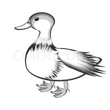 flight bird logotype duck or pelican stock vector colourbox
