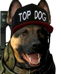 Top Gun Hat Meme - image 548731 top gun hat know your meme