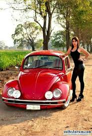 volkswagen harlequin for sale 341 best vw beetle 2 images on pinterest volkswagen beetles