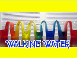 walking water easy kids science experiments youtube
