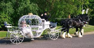 Pumpkin Carriage Cinderella Carriage Hire For Weddings Brisbane Gold Coast Sunshine