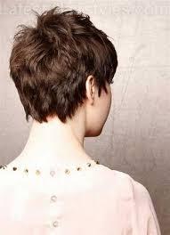 short hair with shag back view image result for medium shag haircut back view short choppy