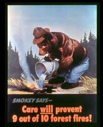 Only You Can Prevent Forest Fires Meme - smokey the bear know your meme