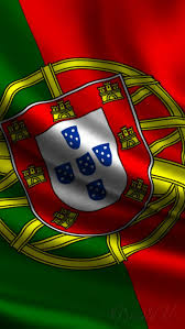 Portugal Football Flag 33 Best Tapeciarnia Pl Rysunek Images On Pinterest Research