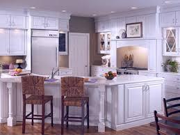 kitchen cabinet stunning prefessional kitchen look use modern