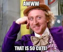 So Cute Meme - awww that is so cute willy wonka sarcasm meme make a meme