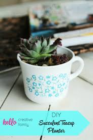 How To Make A Succulent Planter by Diy Succulent Teacup Planter Hello Creative Family