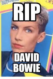 Bowie Meme - 25 best memes about david bowie meme generator david bowie
