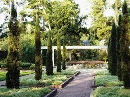 Botanical Gardens Houston Mercer Botanic Gardens Renaissance Garden Progresses Houston