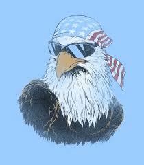 Funny American Flag Shirts Patriotic Eagle Women U0027s Funny T Shirt Headline Shirts