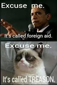 Funny Anti Obama Memes - 430 best anti obama images on pinterest ha ha obama and funny stuff