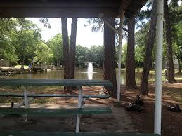 in our own backyard veteran u0027s park gallery