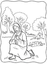 jesus tree symbols bible readings and colouring pages