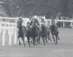 king george vi big race history king george vi and queen elizabeth stakes