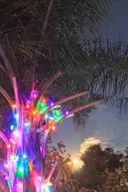 wrapping trees with christmas lights christmas lights decoration