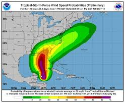 Florida Travel Forecast images Tampa bay under tropical storm watch michael forecast to strike jpg