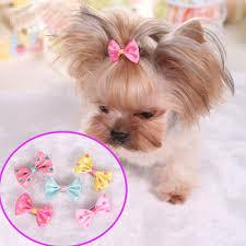 small halloween party aliexpress com buy 10pcs lot cute xmas halloween party cloth pet