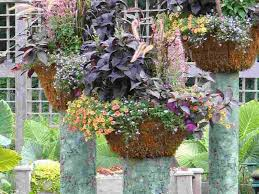 home decor stunning container gardening ideas for flowers new