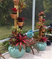 Tropical Potted Plants Outdoor - pole in a pot with hangapot clay pots of bromeliads secured to