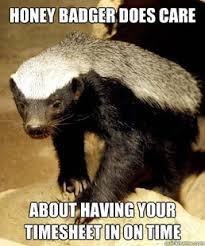 Honey Badger Memes - honey badger meme generator 28 images honey badger meme