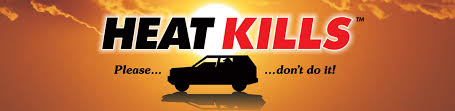 Temperature Of The Interior Of The Sun How Can The Interior Of A Car Get U2013 And How Quickly Heatkills