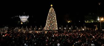 national tree lighting ceremony how to watch the national christmas tree lighting if you don t plan