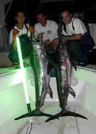 hydro glow fishing lights hydra glow lights