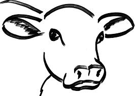cow head drawing u2026 pinteres u2026