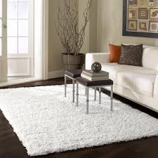 Plush Area Rugs 8x10 8x10 Shag Rug Home Design Ideas And Pictures